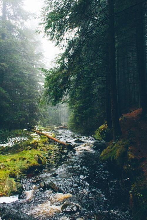 Nature Wallpapers Tumblr