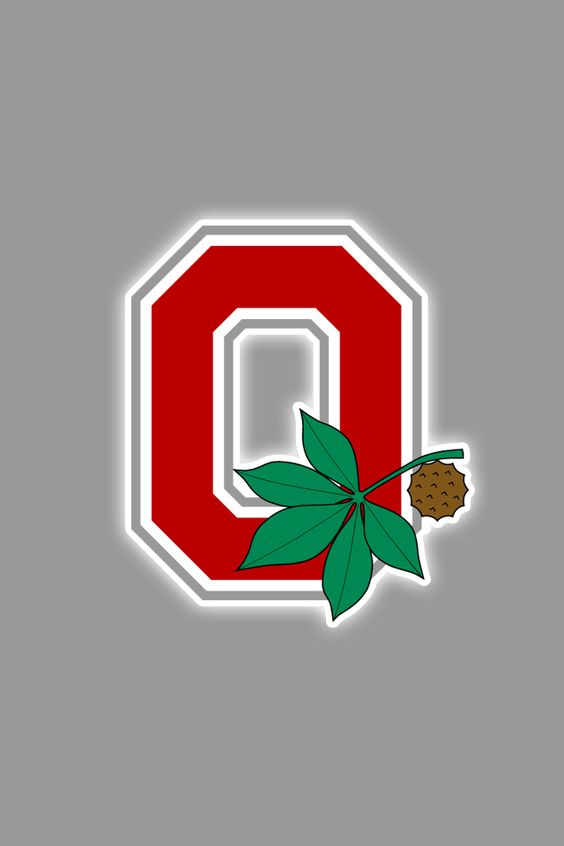 Free Ohio State Buckeyes iPhone Wallpapers  Install in seconds, 21