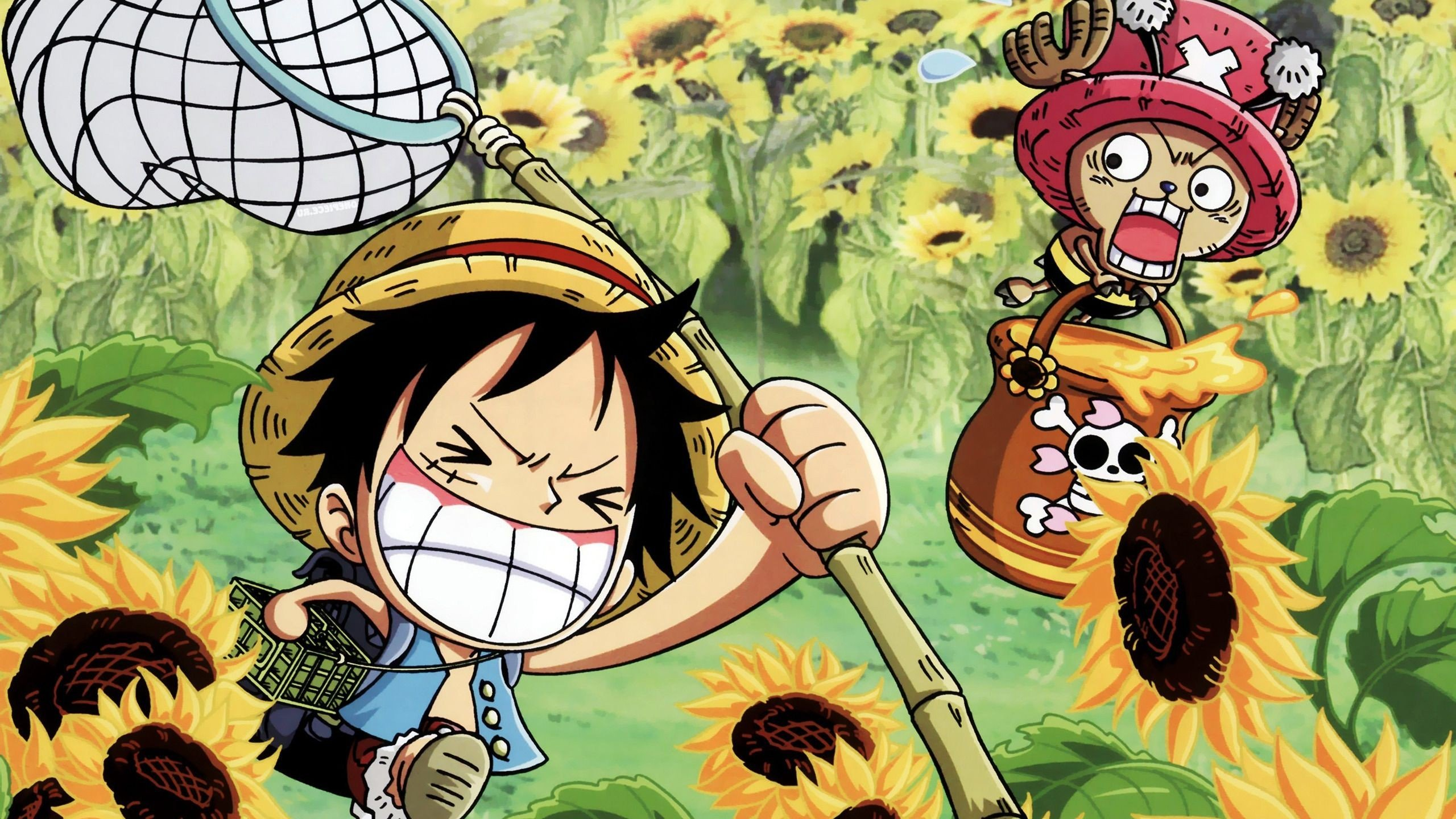 one piece wallpaper 1366x768 - sf wallpaper