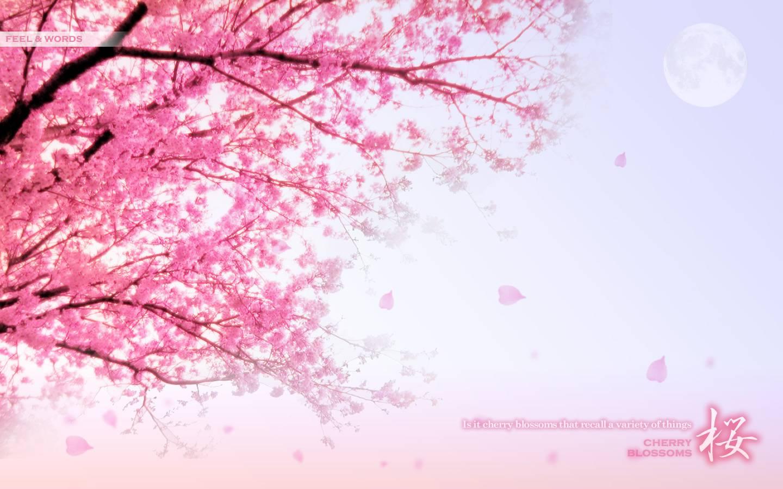 Pretty Wallpapers - WallpaperSafari