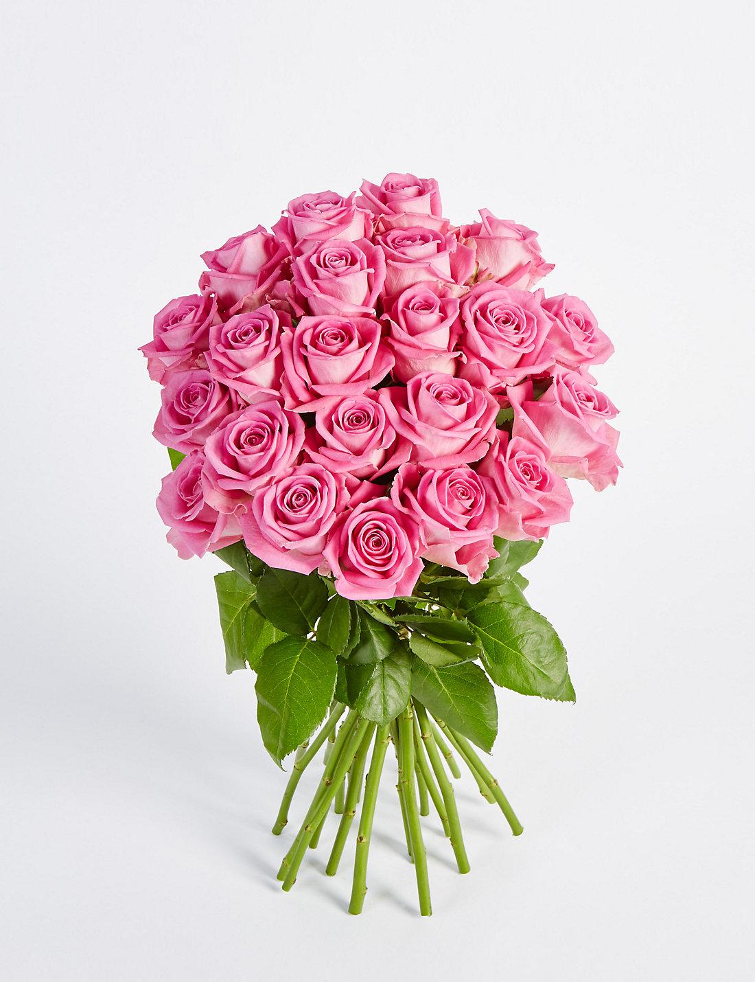 Pink Roses Images Sf Wallpaper