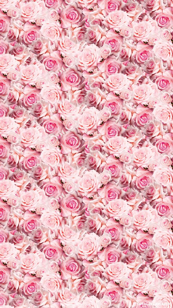 Pink Iphone Wallpaper Tumblr Wallpapers Pinterest