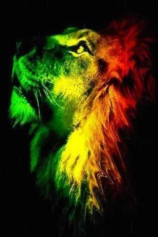 Rasta Lion Live Wallpaper Download - Rasta Lion Live Wallpaper 2