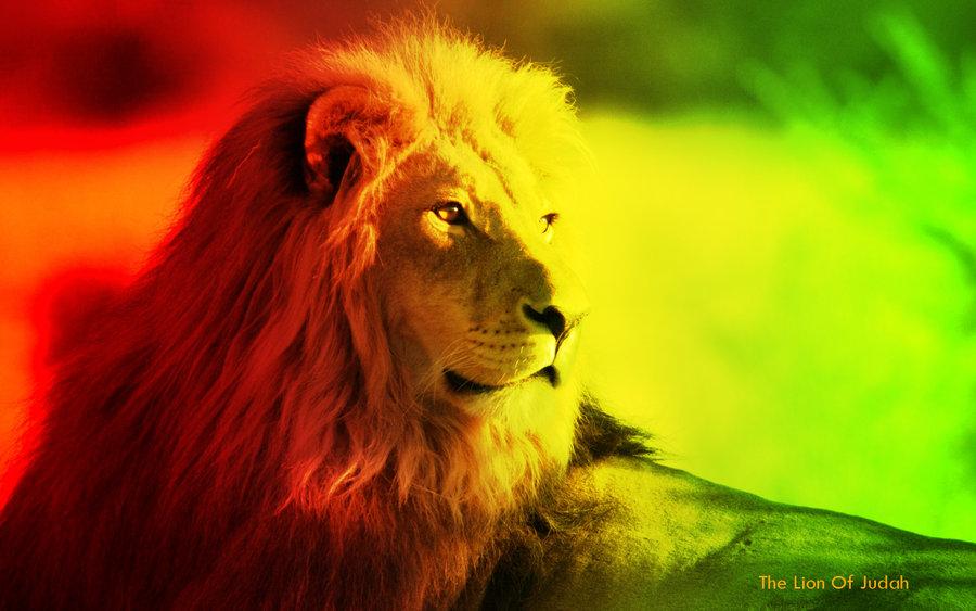Rasta Lion Wallpaper