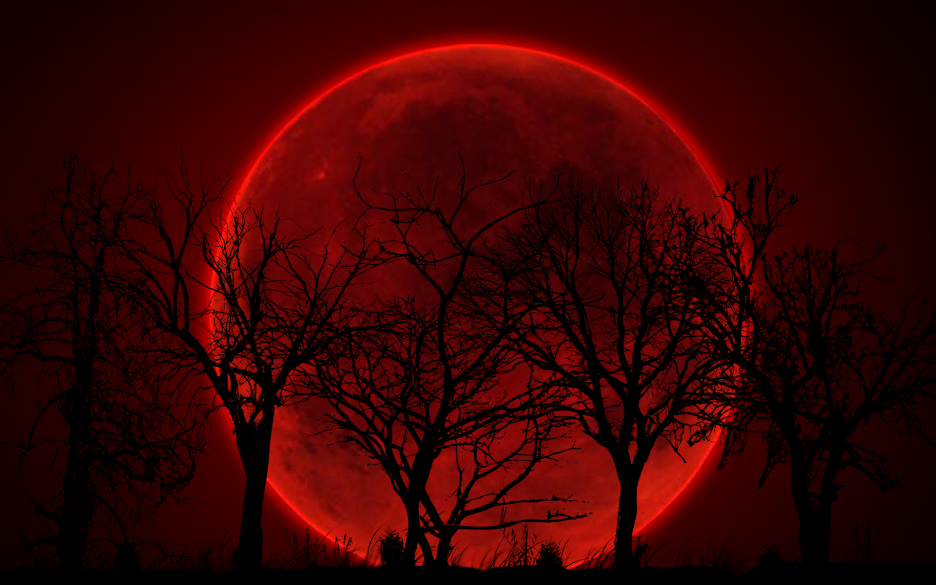 High Quality Red Moon Wallpaper | Full HD Pictures
