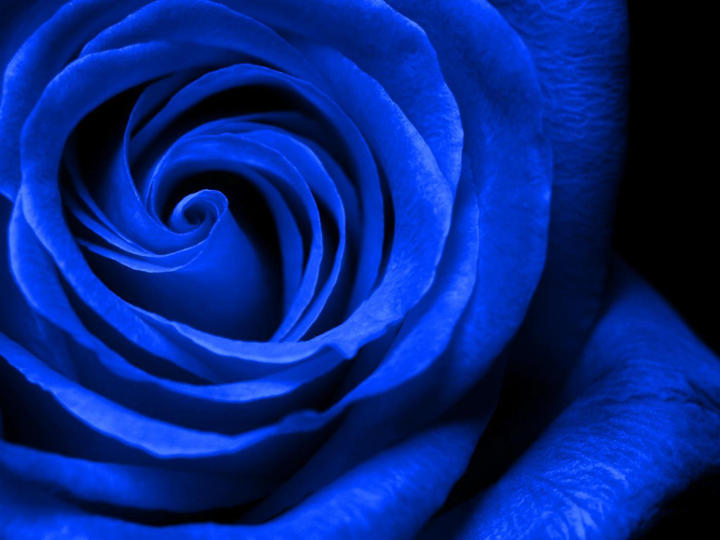 royal blue wallpapers - sf wallpaper