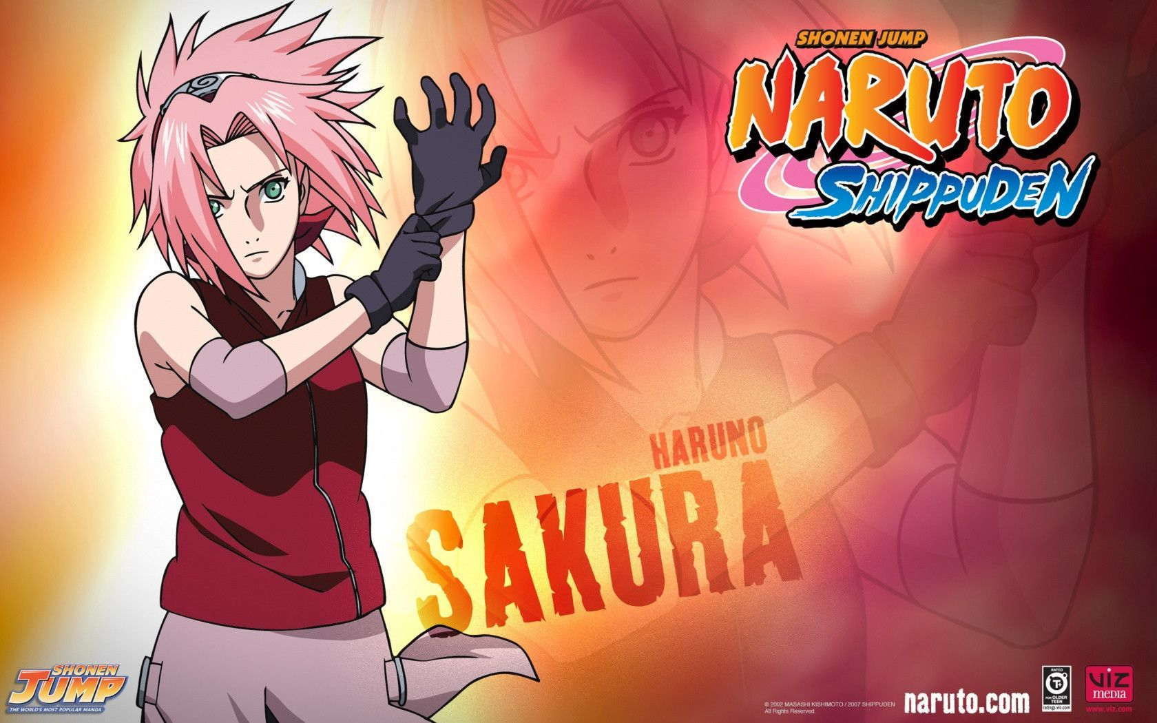 Sakura Shippuden Wallpapers - Wallpaper Cave