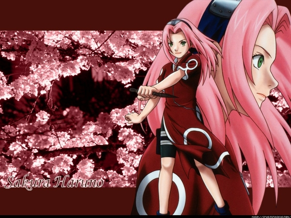 Sakura Shippuden Wallpaper