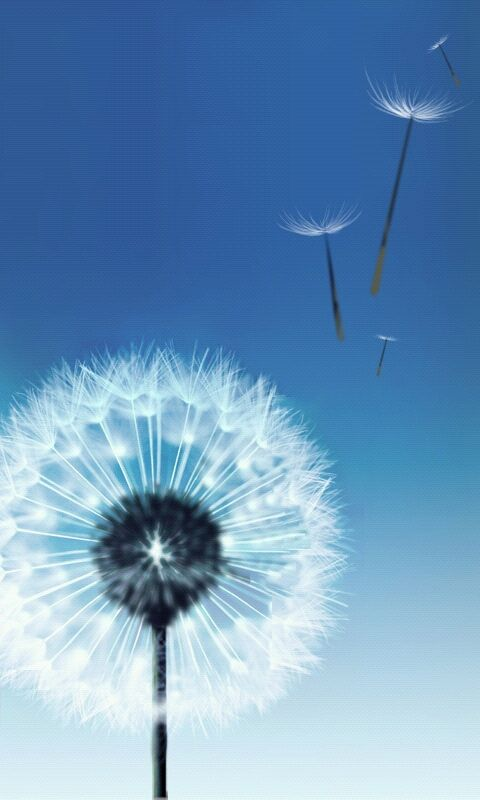wallpaper for samsung galaxy s4
