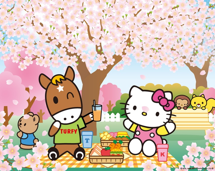 78 Best images about Hello Kitty & Friends on Pinterest | Sanrio