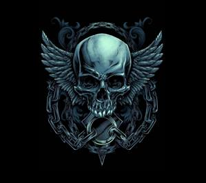 Download Free Skull Wallpapers For Your Mobile Phone