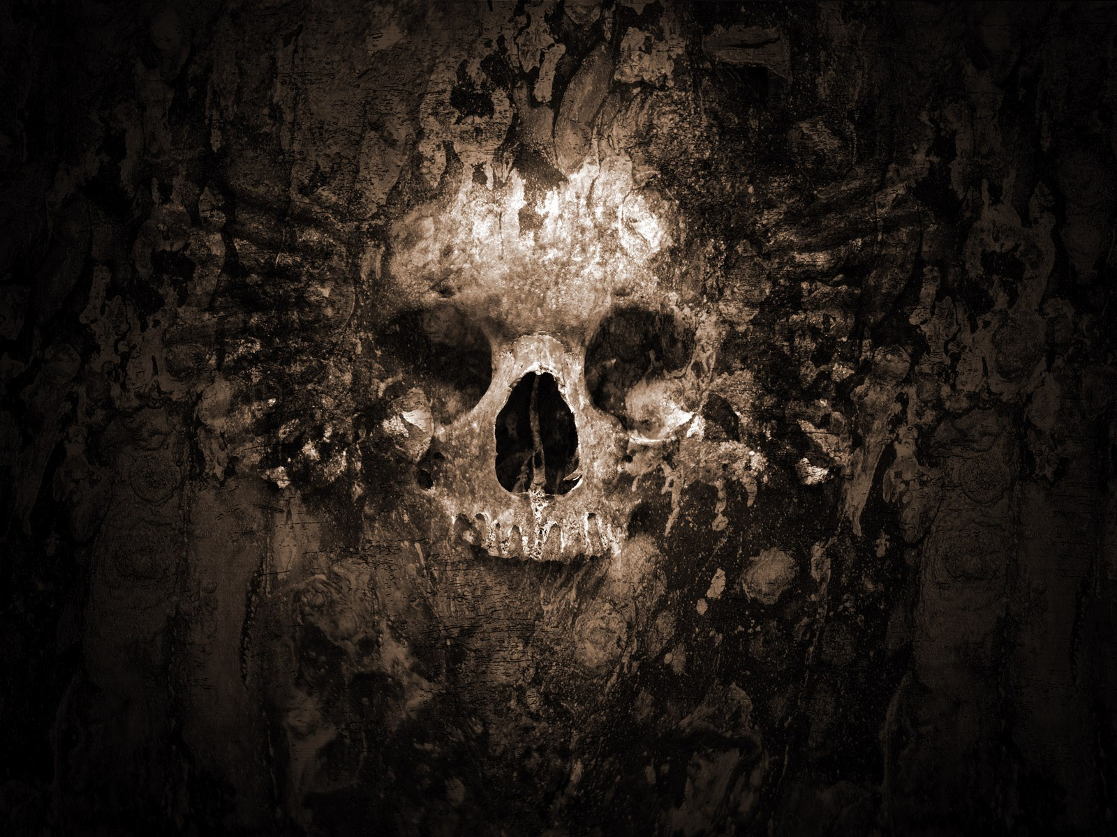 skulls, bones :: Wallpapers