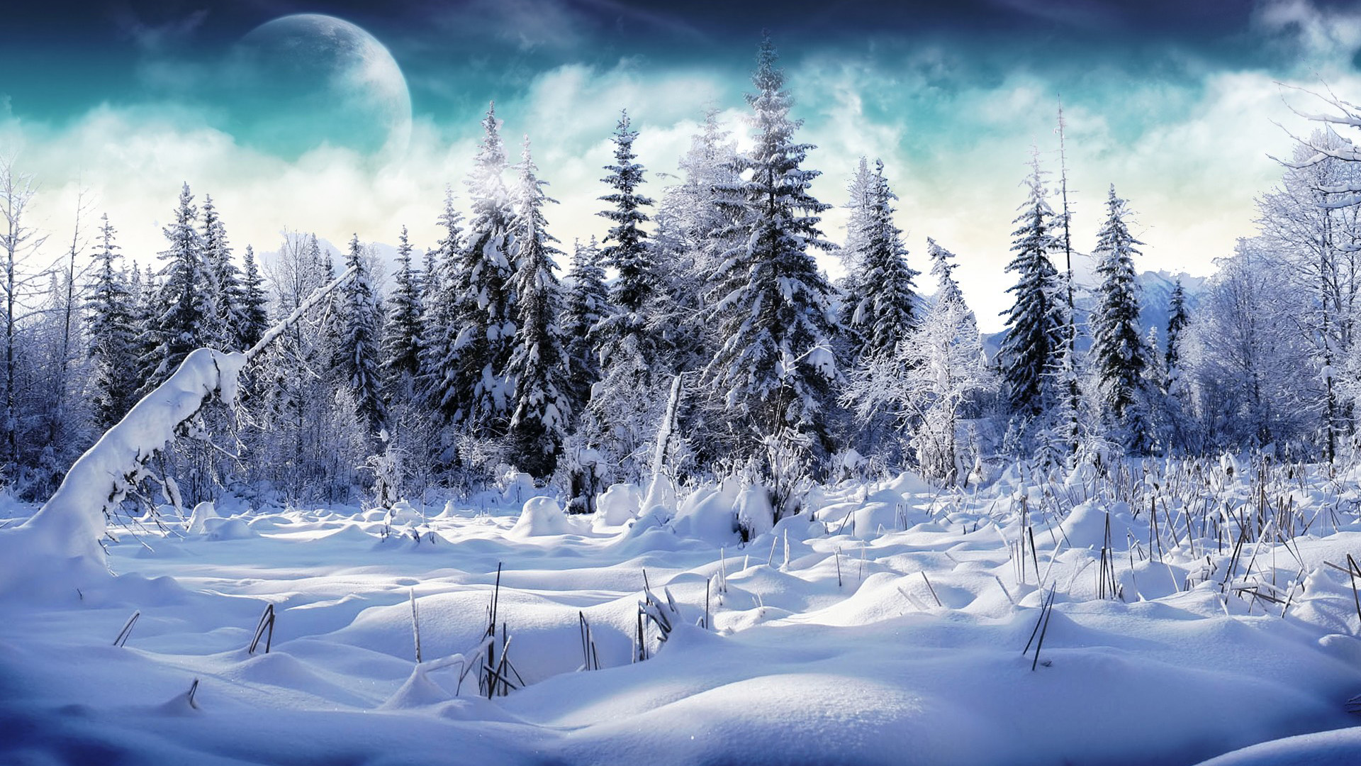 Wallpaper's Collection: «Snow Wallpapers»