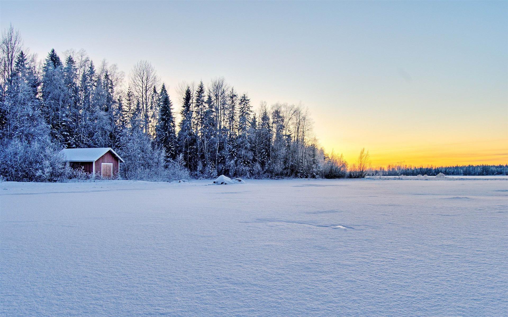 Amazing Wallpaper Love Winter - snow-winter-wallpaper-16  Photograph_483533.jpg