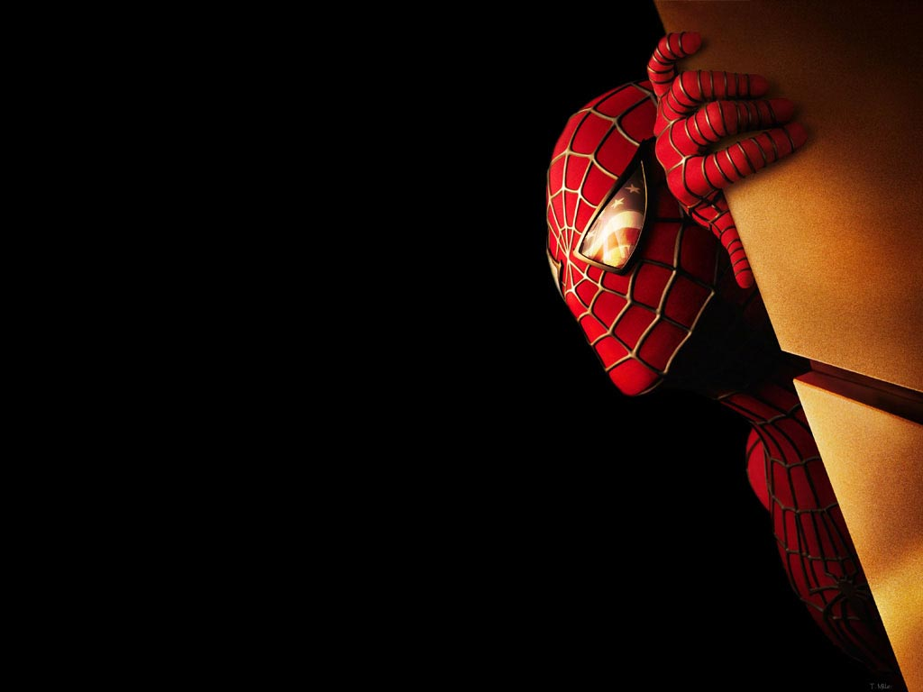Spider Man Wallpapers HD Group (93+)