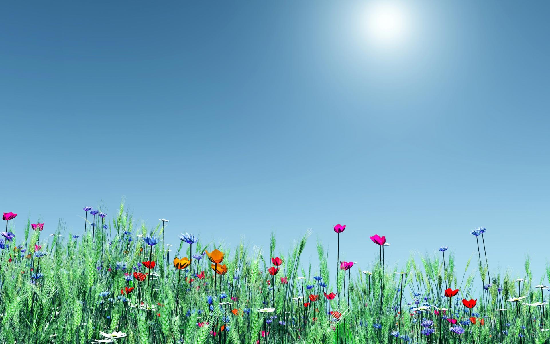Spring Widescreen Wallpaper Sf Wallpaper