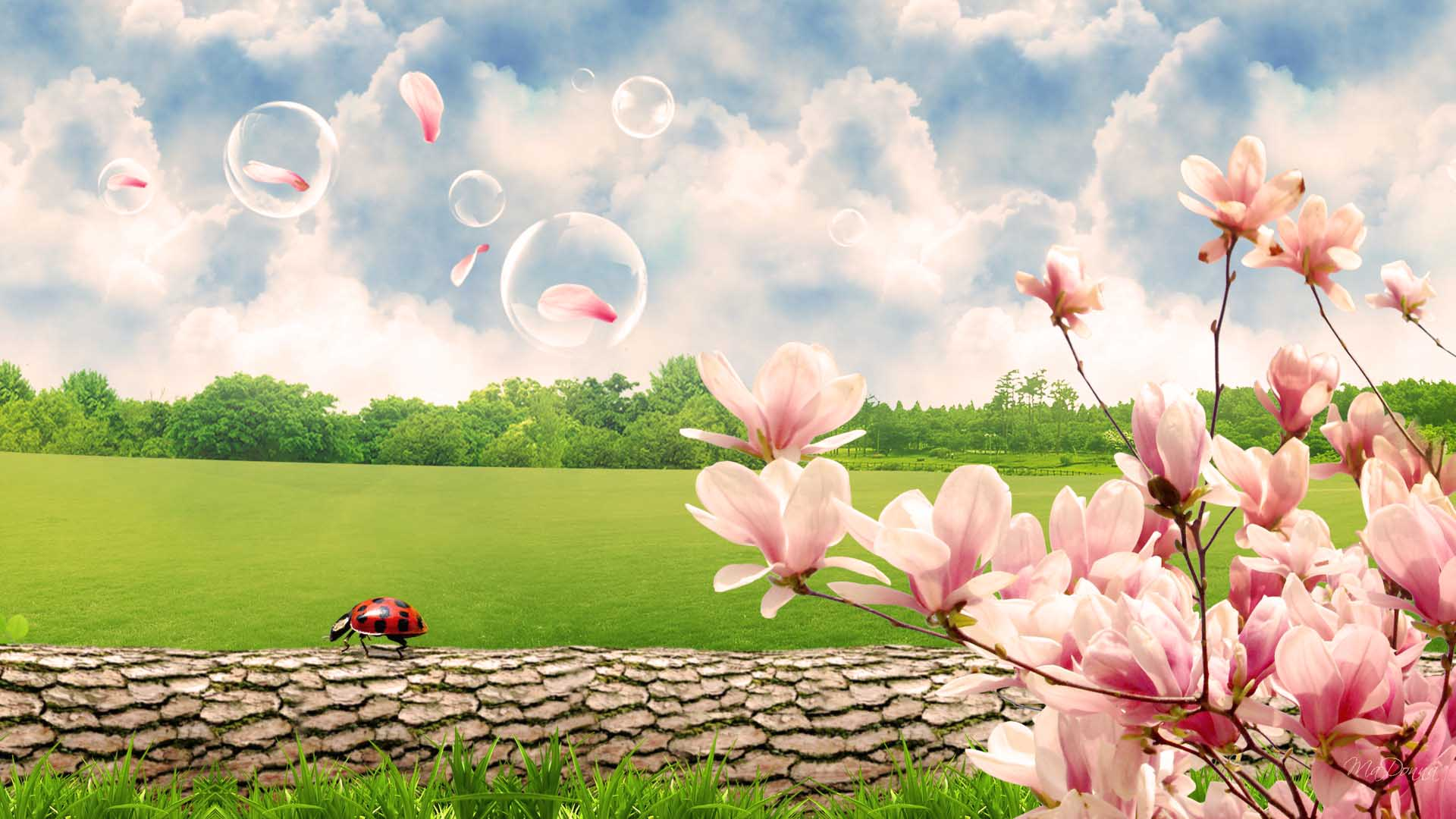 Spring scenes wallpaper sf wallpaper spring scenes wallpapers wallpaper cave mightylinksfo