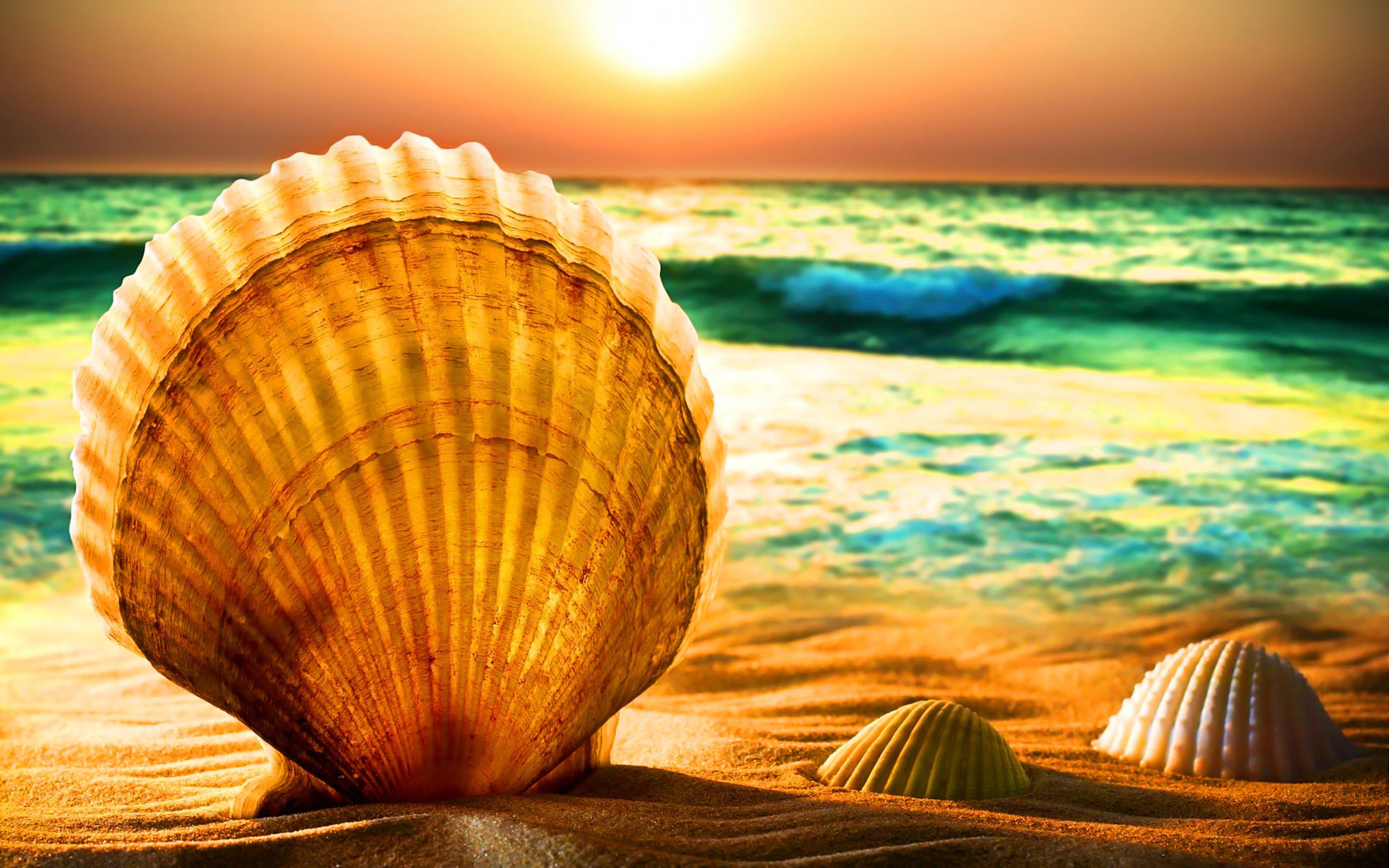 Summertime, 100% Quality HD Photos, Catriona Earney