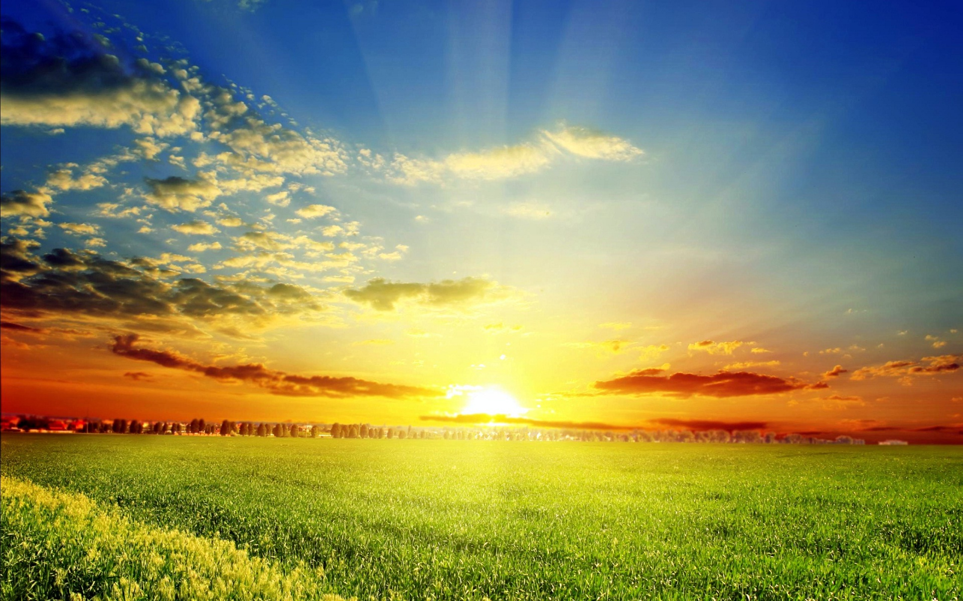 Collection of Sunshine Wallpaper on HDWallpapers