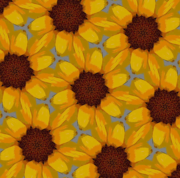 Sunflower, Backgrounds, Textures - Free images on Pixabay