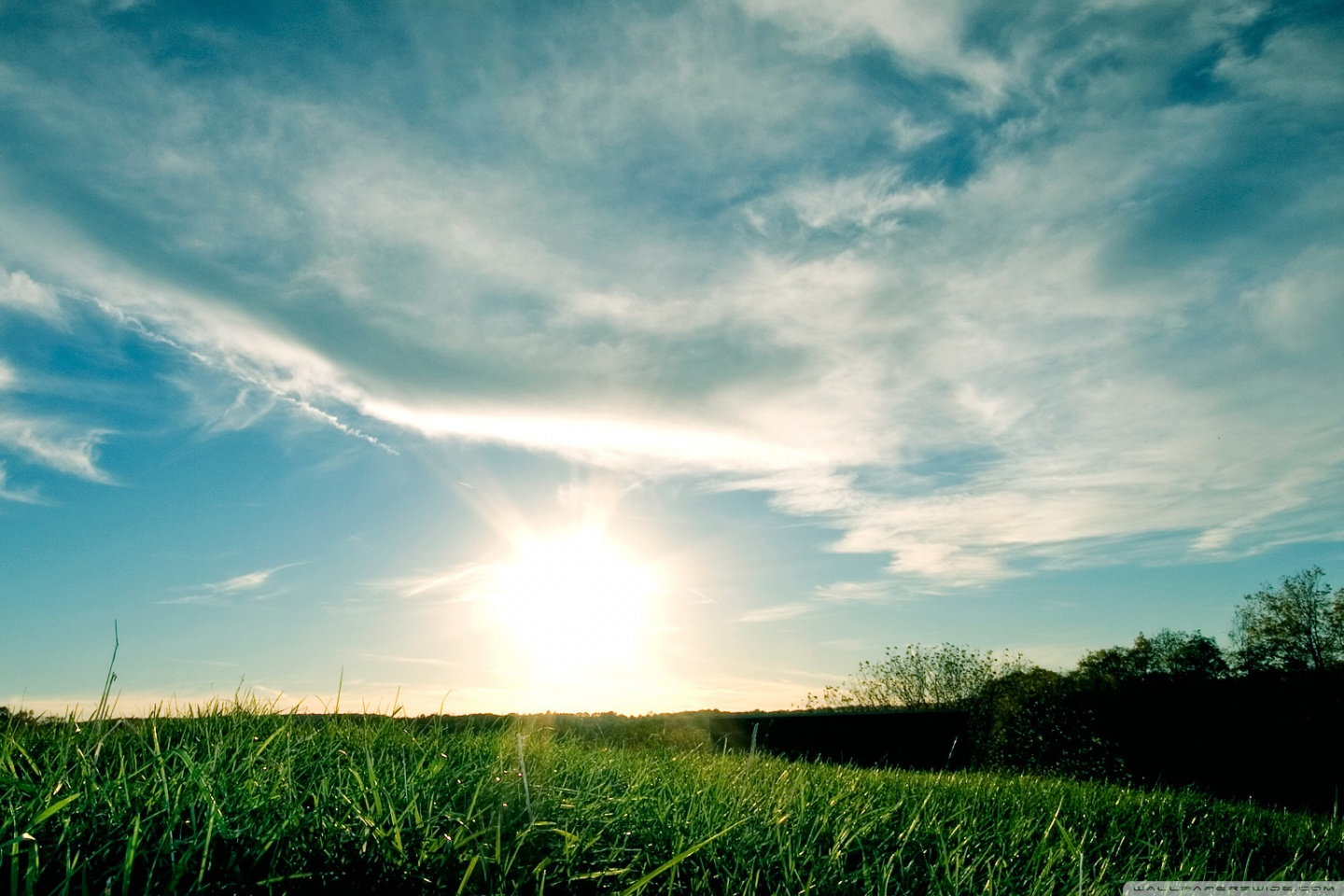 Sunny day wallpapers sf wallpaper - Sunny day wallpaper ...