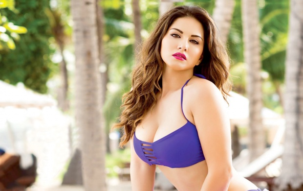 Collection of Sunny Leone Hd Pic on HDWallpapers