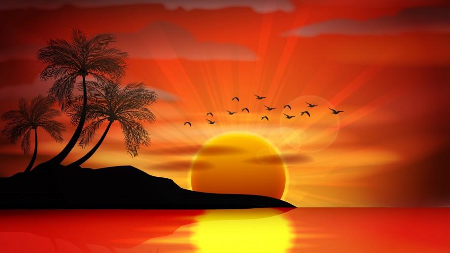 Sunset Sea Paradise Tropical Island Palms Silhouette Birds Sea