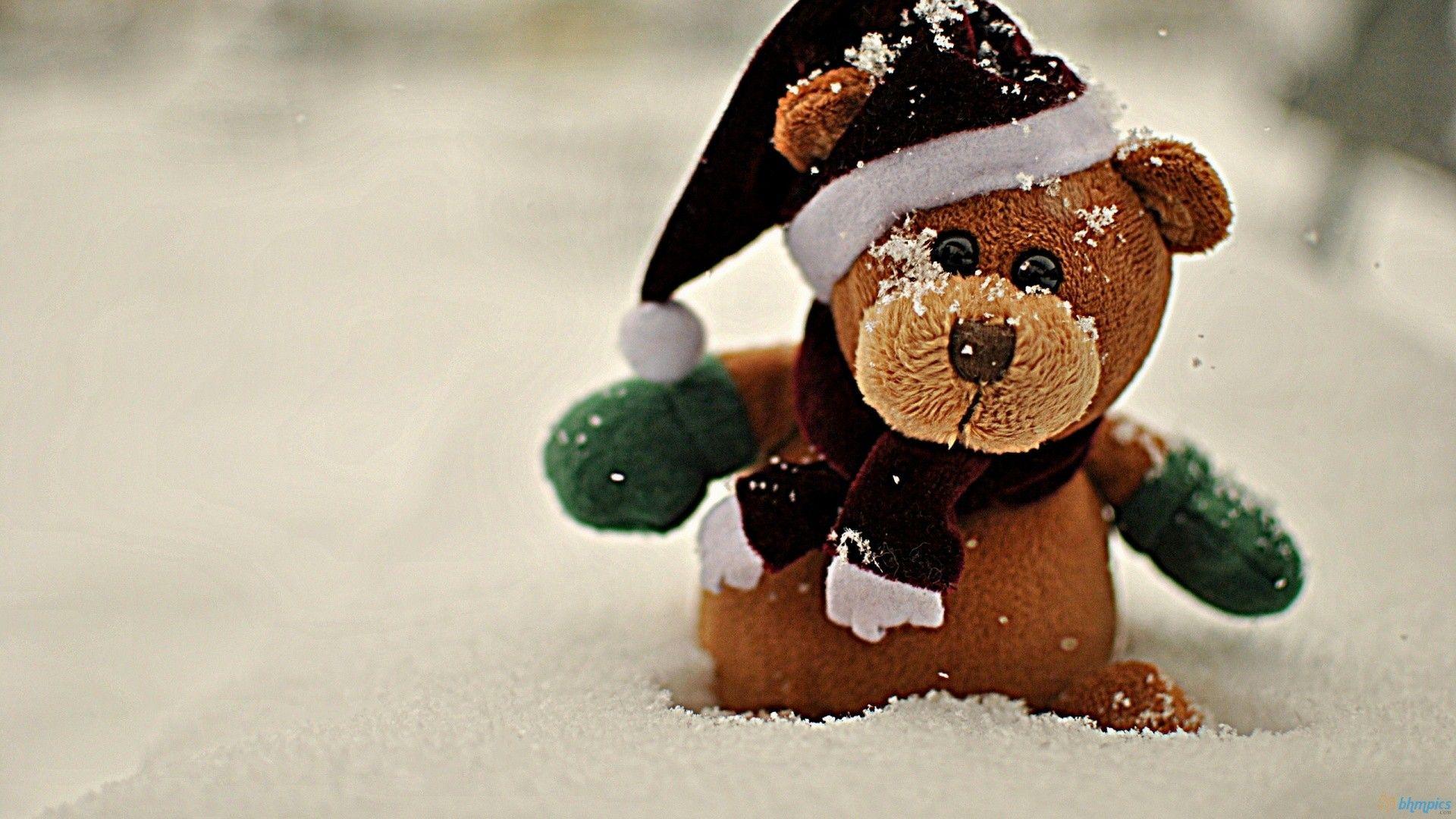 teddy bear wallpaper - sf wallpaper