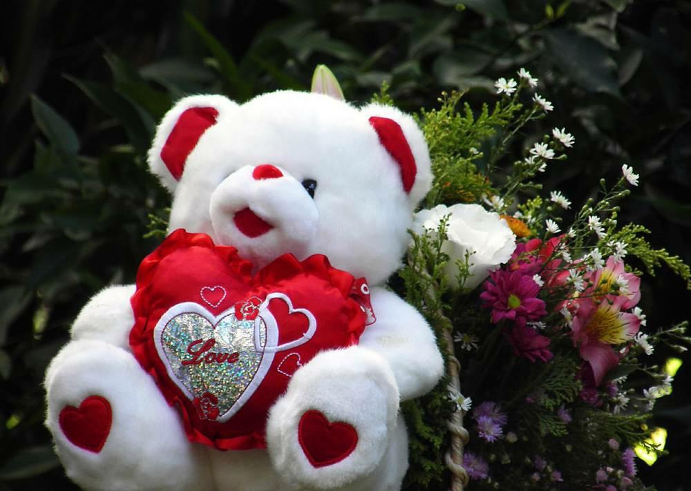 Hd Cute Teddy Bear Wallpapers Love Download