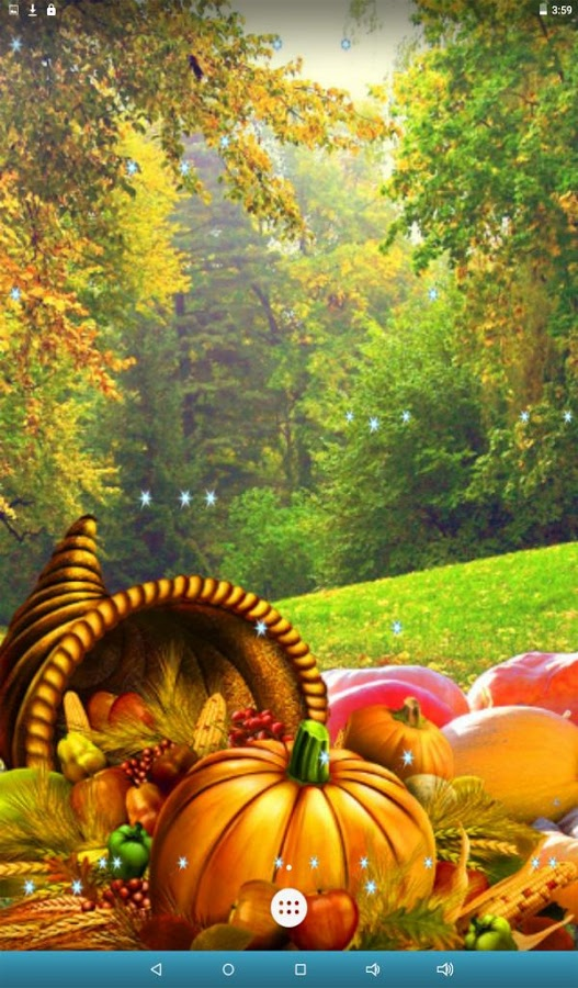 Thanksgiving Pictures Wallpaper Sf Wallpaper