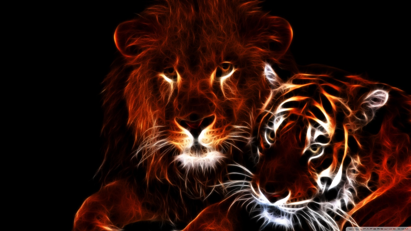 tiger and lion wallpaper #20