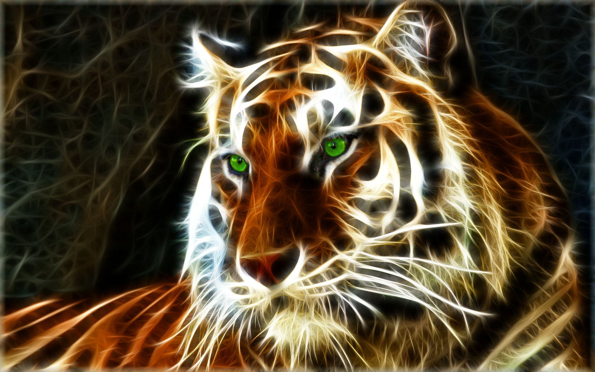 tiger background wallpaper #22