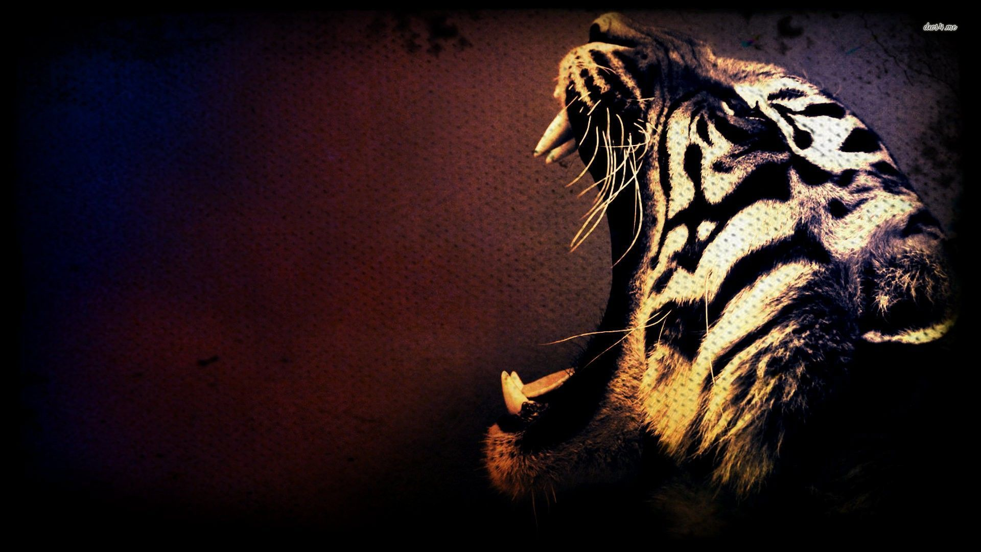 Tiger Background Wallpaper