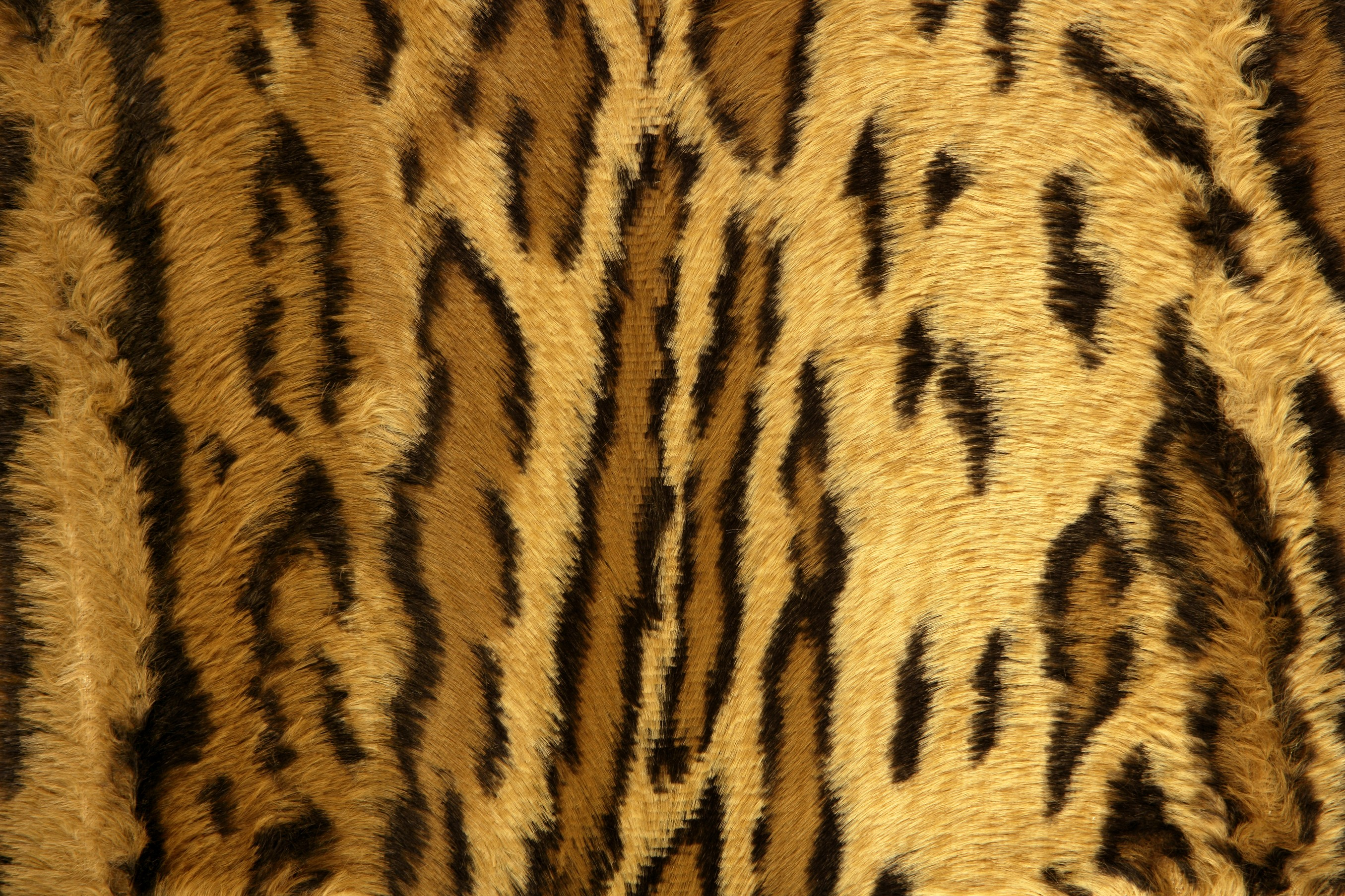 Cheetah Print iPhone Wallpapers Group (43+)