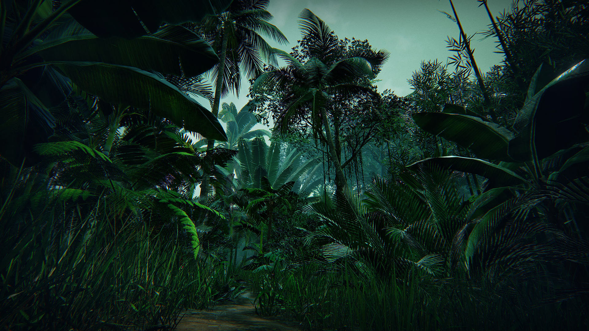 Tropical Forest by Manufactura K4 in Environments - UE4 Marketplace
