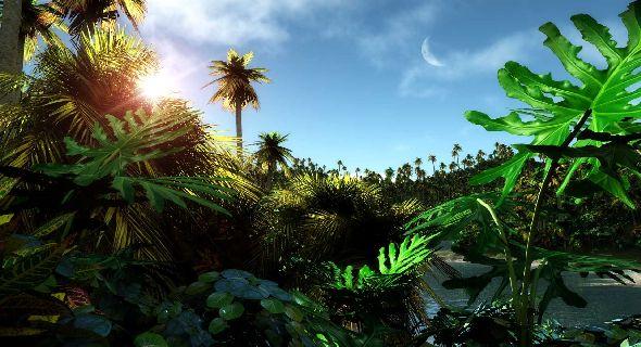 Tropical Jungle Wallpaper Sf Wallpaper