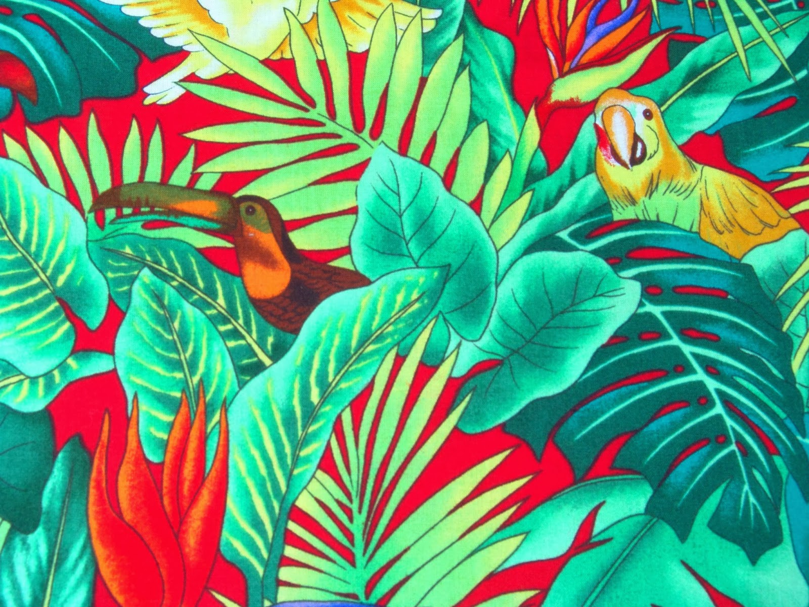 tropical print wallpaper sf wallpaper
