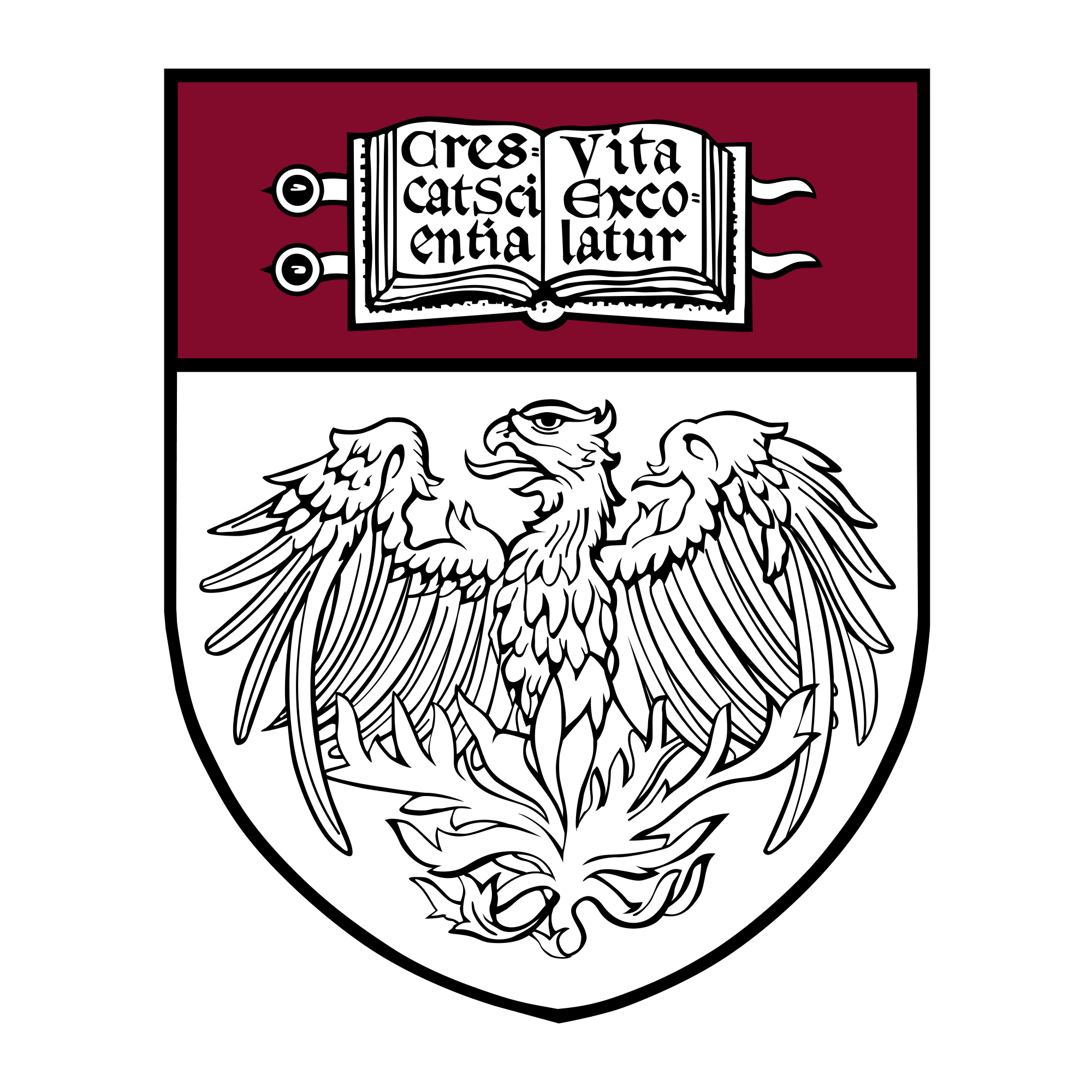 University Of Chicago Wallpapers Group (61+)