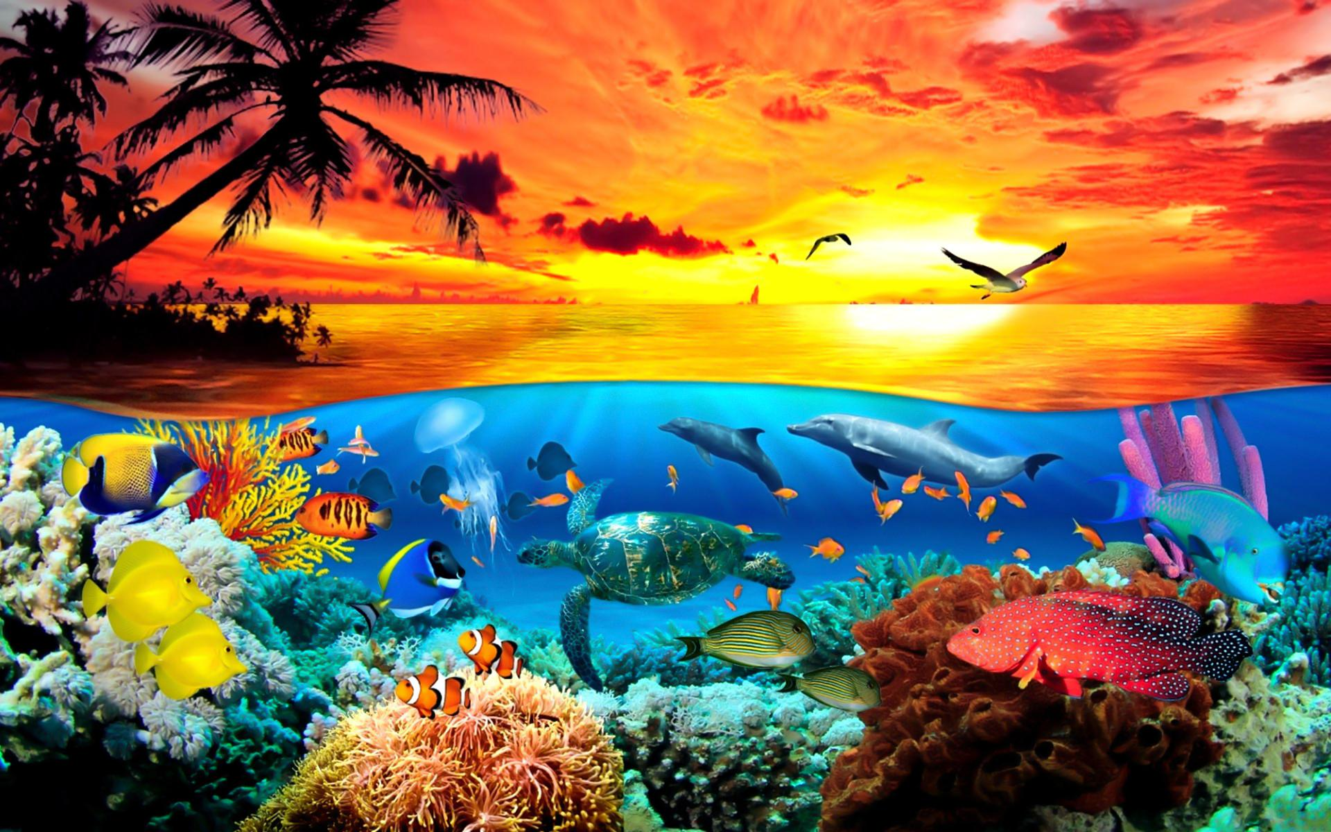 Wallpaper Under The Sea Sf Wallpaper