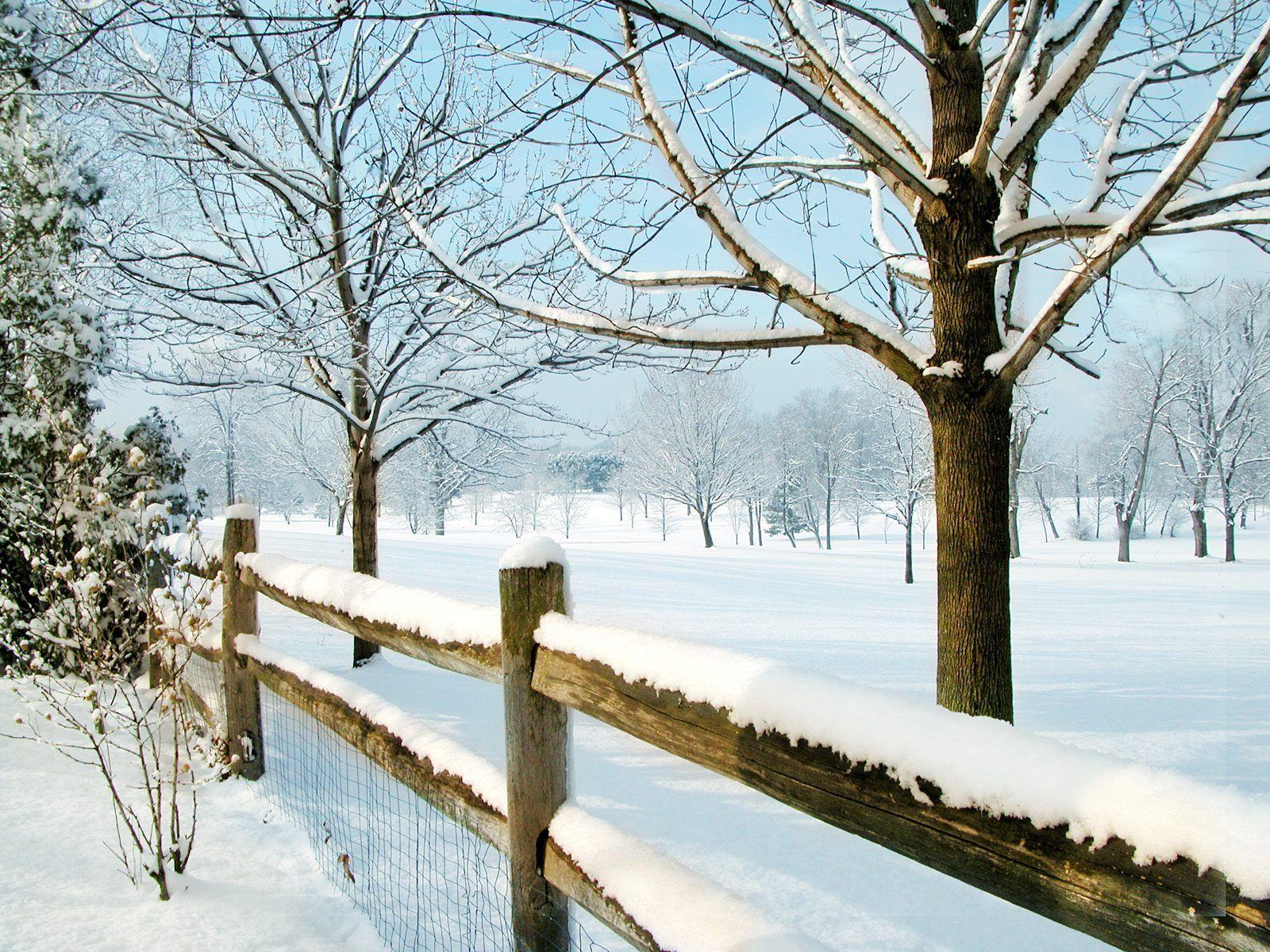 Winter scenes backgrounds - SF Wallpaper