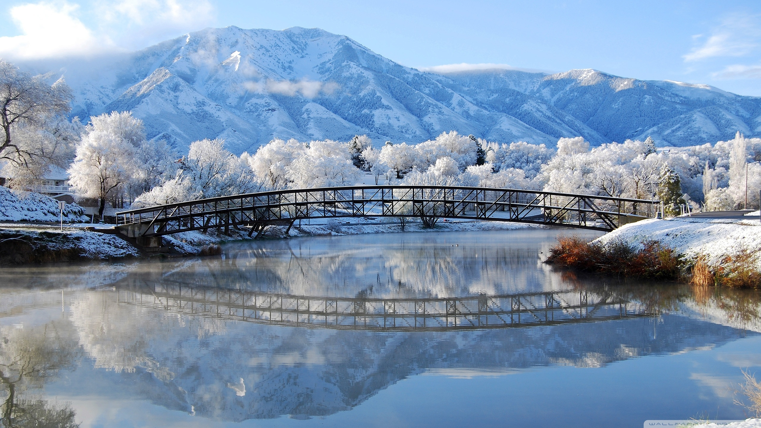 Good Wallpaper Mountain 1440p - widescreen-winter-wallpaper-18  Pic_273810.jpg