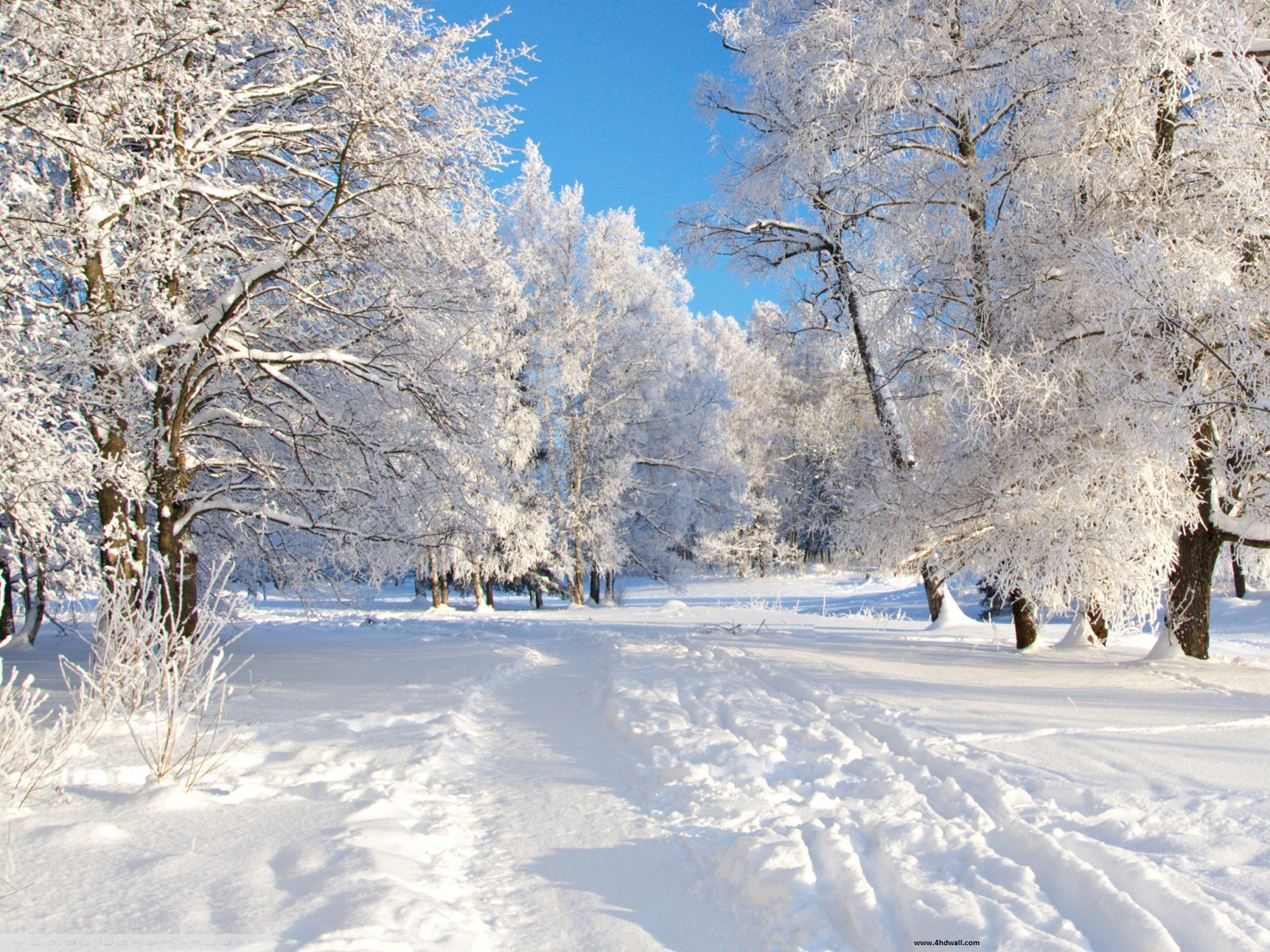 Winter Backgrounds for Desktop | PixelsTalk Net
