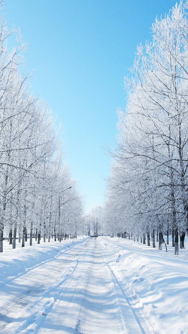 Iphone Wallpaper Winter