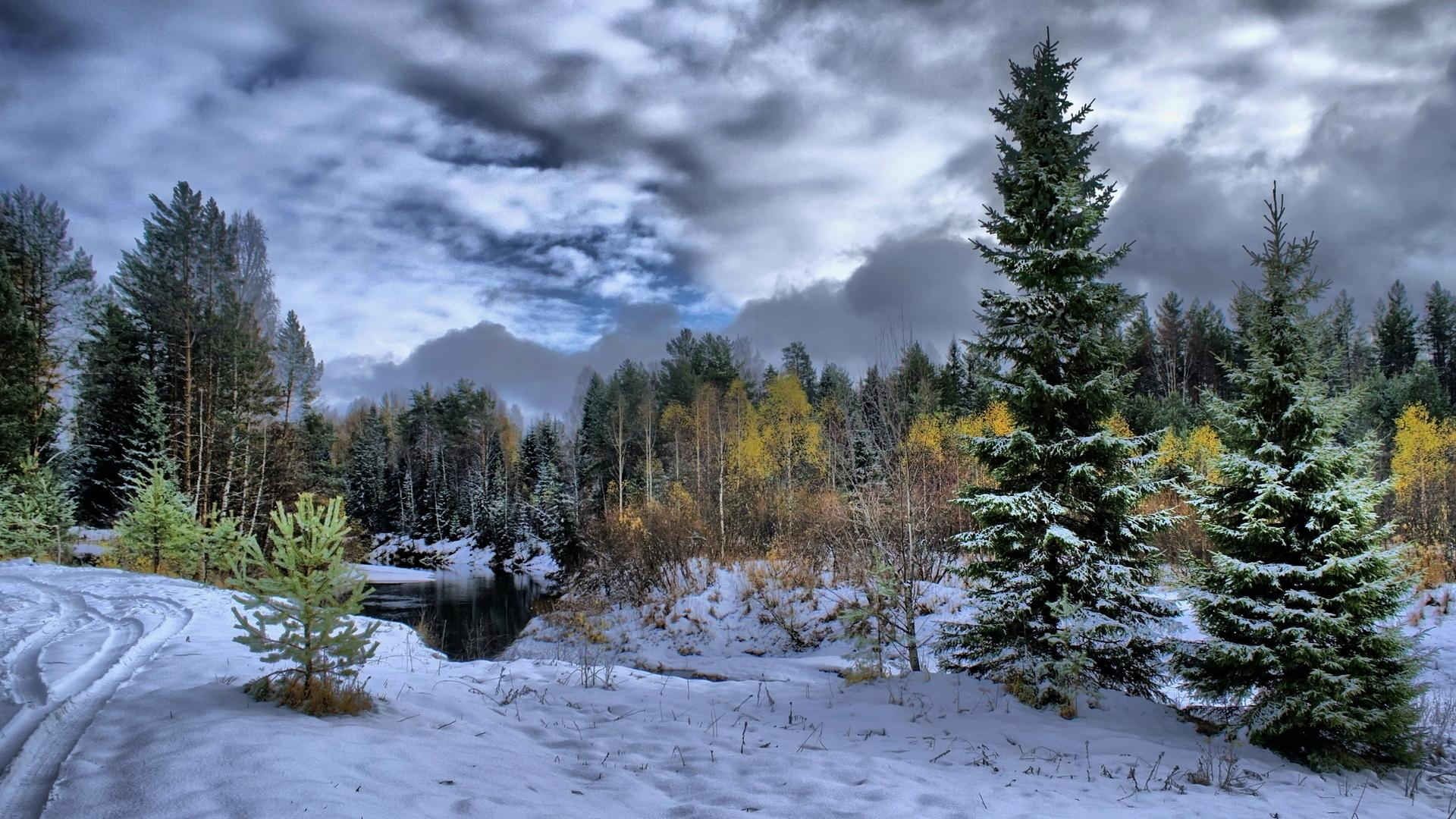 Winter nature scenes wallpaper sf wallpaper 17 best images about winter scenery wallpaper on pinterest voltagebd Image collections