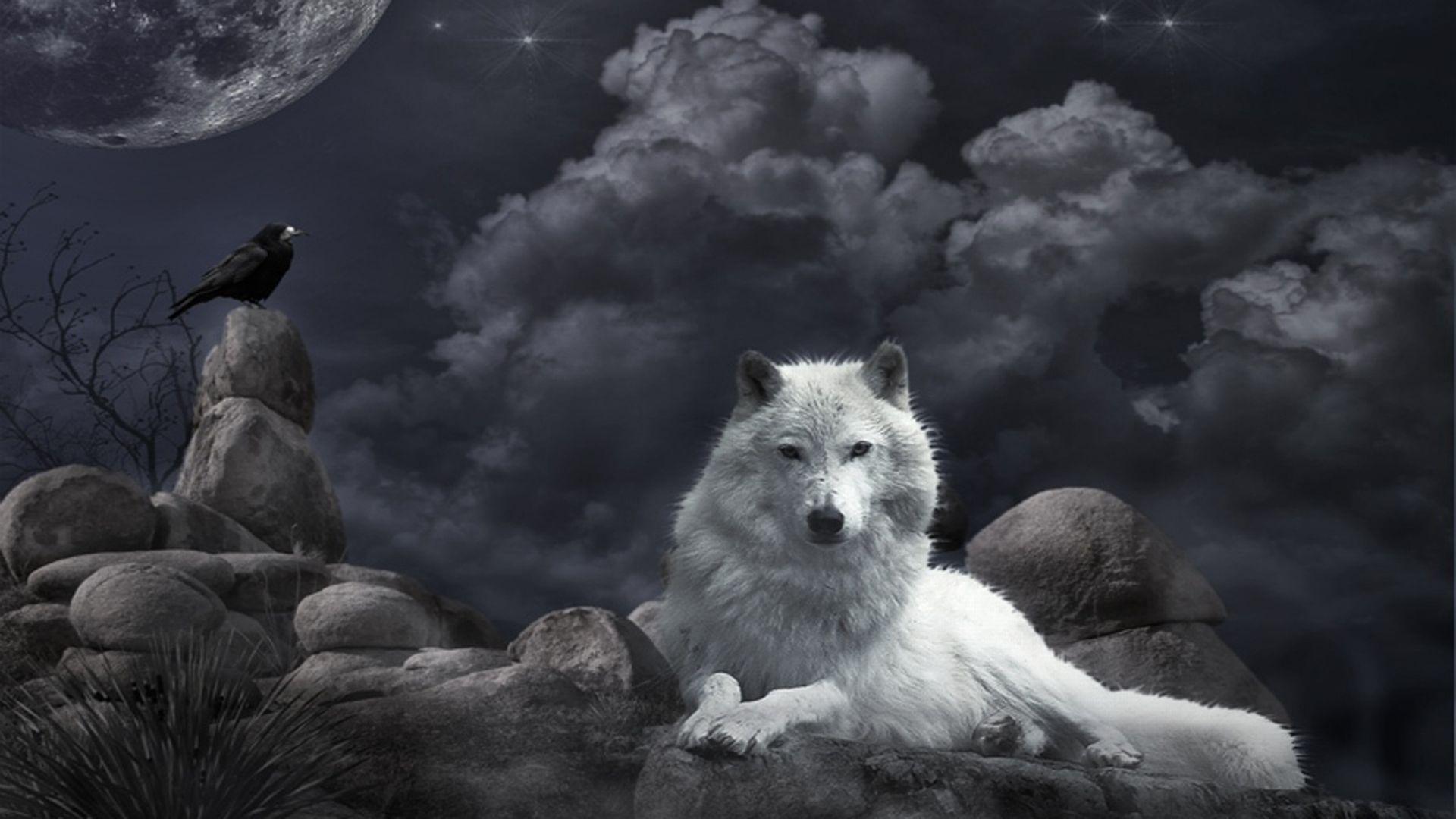 Wolf fantasy wallpaper - SF Wallpaper