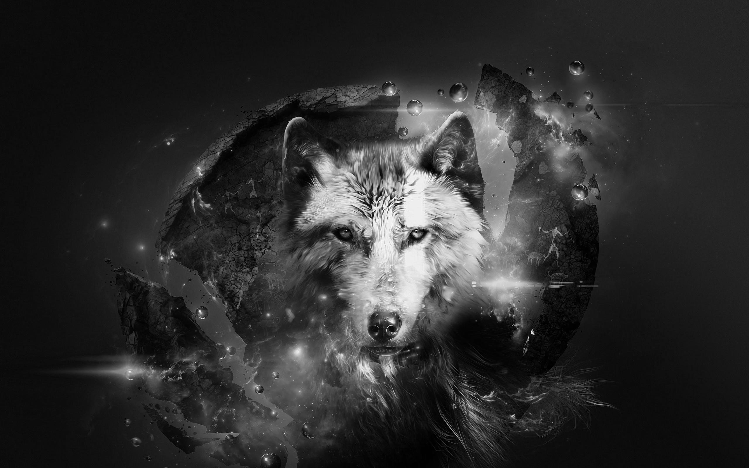Wolf Fantasy Wallpaper Sf Wallpaper