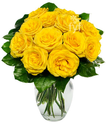 One Dozen Yellow Roses at From You Flowers