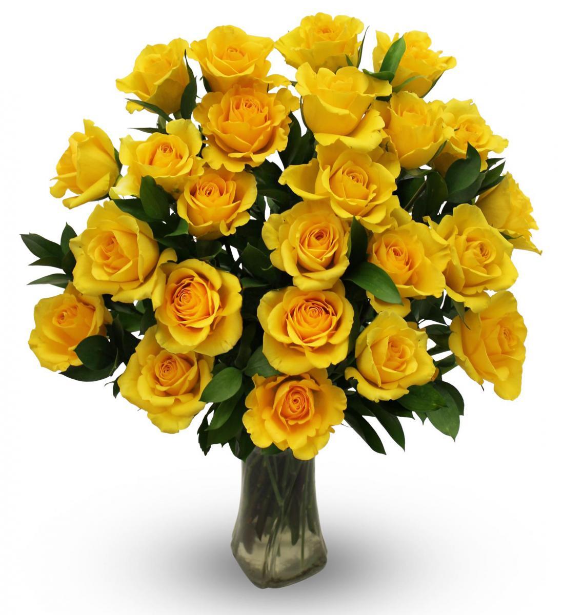 Yellow Roses - Two Dozen | Avas Flowers