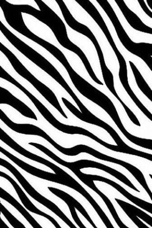43 units of Zebra Print Wallpaper