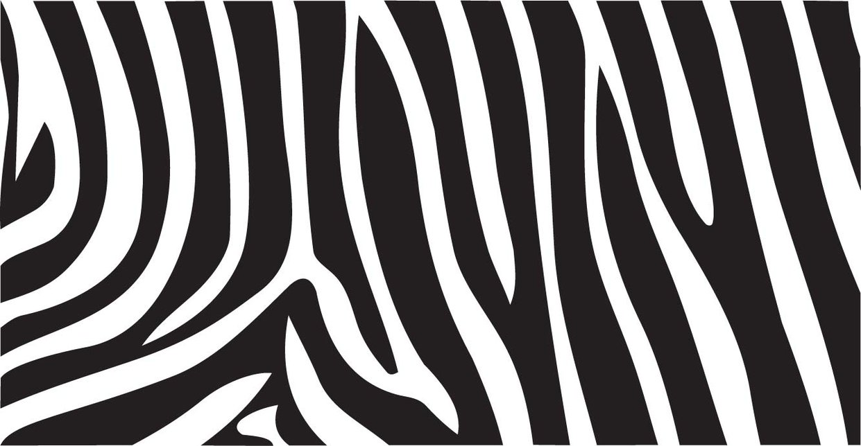 22 Zebra Print Wallpaper Pictures